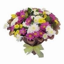 Kocaeli çiçekçiler  Mevsim kir çiçegi demeti