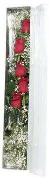 Kocaeli uluslararası çiçek gönderme   5 adet gülden kutu güller
