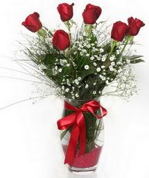 7 adet gülden cam içerisinde güller  yurtiçi ve yurtdışı çiçek siparişi