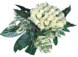 Kocaeli hediye sevgilime hediye çiçek  9 Beyaz gül Özel kisiler için