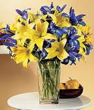 Kocaeli online çiçekçi , çiçek siparişi  Lilyum ve mevsim  çiçegi özel