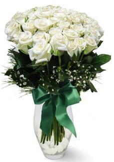 19 adet essiz kalitede beyaz gül  Kocaeli anneler günü çiçek yolla