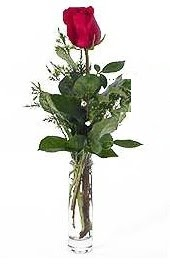 Vazo içerisinde 1 adet kirmizi gül  kaliteli taze ve ucuz çiçekler