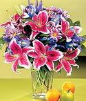 çiçek yolla  Sevgi bahçesi Özel  bir tercih