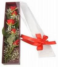 kutu içinde 5 adet kirmizi gül  Kocaeli hediye sevgilime hediye çiçek