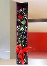 kutu içinde tek kirmizi gül  Kocaeli İnternetten çiçek siparişi