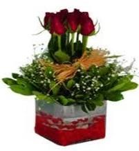 Kocaeli internetten çiçek satışı  7 adet mika yada cam vazoda gül tanzimi