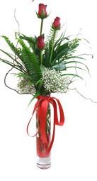 Kocaeli uluslararası çiçek gönderme  3 adet kirmizi gül vazo içerisinde