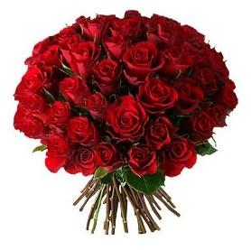 Kocaeli çiçek siparişi vermek  33 adet kırmızı gül buketi