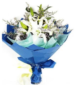 Kocaeli online çiçekçi , çiçek siparişi  4 adet dal kazablankadan görsel buket