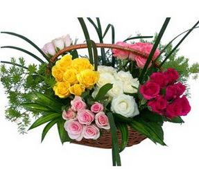 Kocaeli online çiçek gönderme sipariş  35 adet rengarenk güllerden sepet tanzimi