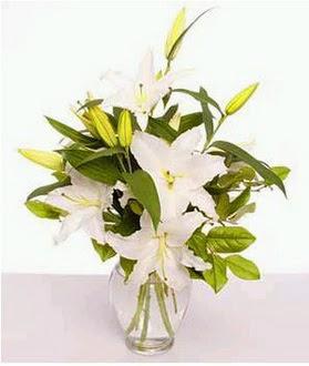 Kocaeli internetten çiçek satışı  2 dal cazablanca vazo çiçeği