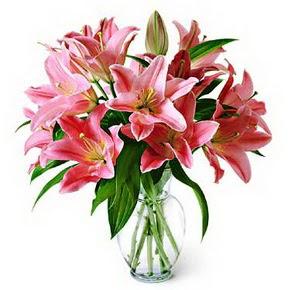 3 dal kazablanka görsel vazosu  Kocaeli hediye sevgilime hediye çiçek