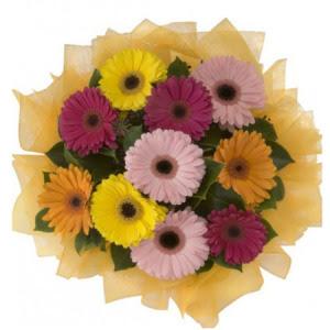 hediye çiçek yolla  11 adet karışık gerbera çiçeği buketi