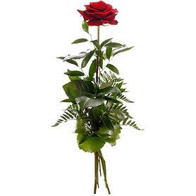 Kocaeli çiçek , çiçekçi , çiçekçilik  1 adet kırmızı gülden buket