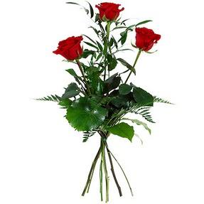 Kocaeli güvenli kaliteli hızlı çiçek  3 adet kırmızı gülden buket
