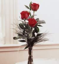 14 şubat sevgililer günü çiçek  Vazoda 3 adet güzel gül