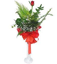 Kocaeli online çiçekçi , çiçek siparişi  Cam vazoda masum tek gül