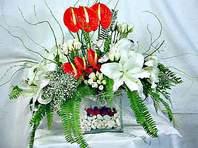 çiçek yolla  Anthurim Kazablanka  gül