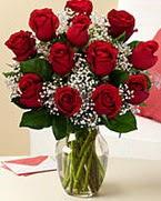 Sevgilime hediye 9 adet 1.ci kalite gül  Kocaeli online çiçekçi , çiçek siparişi