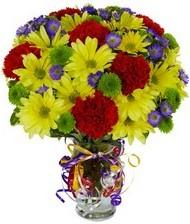 En güzel hediye karışık mevsim çiçeği  Kocaeli cicek , cicekci