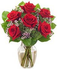 Kız arkadaşıma hediye 6 kırmızı gül  Kocaeli hediye sevgilime hediye çiçek