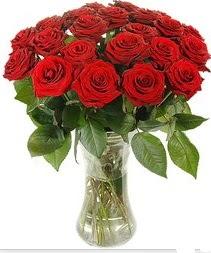 çiçek yolla  Vazoda 15 adet kırmızı gül tanzimi