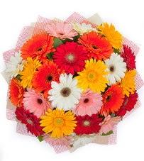 15 adet renkli gerbera buketi  Kocaeli çiçek satışı