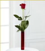 Vazo içerisinde 1 adet kırmızı gül  Kocaeli hediye sevgilime hediye çiçek