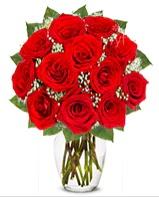 12 adet vazoda kıpkırmızı gül  Kocaeli çiçek mağazası , çiçekçi adresleri