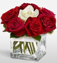 Tek aşkımsın çiçeği 8 kırmızı 1 beyaz gül  Kocaeli güvenli kaliteli hızlı çiçek