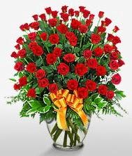 Görsel vazo içerisinde 101 adet gül  Kocaeli çiçek mağazası , çiçekçi adresleri