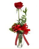 vazo içerisinde 1 adet kırmızı gül  Kocaeli çiçekçiler