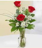 Vazo içerisinde 3 adet kırmızı gül  Kocaeli internetten çiçek siparişi