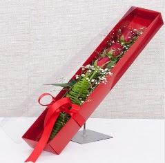Kutu içerisinde 3 adet kırmızı gül  Kocaeli çiçek servisi , çiçekçi adresleri