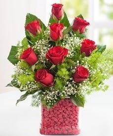 Cam içerisinde 9 adet kırmızı gül  14 şubat sevgililer günü çiçek