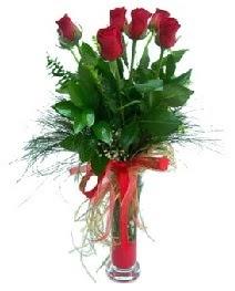 vazo içerisinde 5 kırmızı gül  çiçekçi telefonları