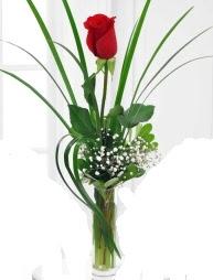 Cam içerisinde 1 kırmızı gül  Kocaeli çiçekçi mağazası
