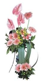 çiçekçi telefonları  Pembe Antoryum Harikalar Rüyasi