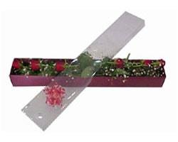Kocaeli online çiçekçi , çiçek siparişi   6 adet kirmizi gül kutu içinde