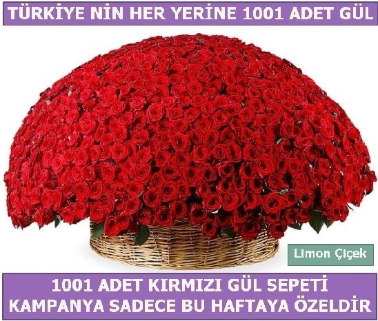 1001 Adet kırmızı gül Bu haftaya özel  hediye çiçek yolla