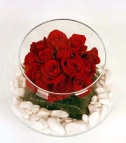 Cam fanusta 11 adet kırmızı gül  Kocaeli internetten çiçek satışı