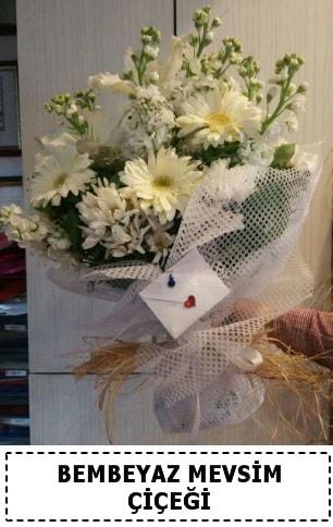 Bembeyaz görsel mevsim çiçek buketi  çiçek siparişi sitesi
