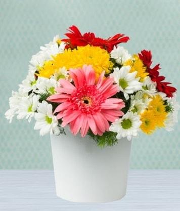 Seramik Vazoda Gelbera ve Papatya  Kocaeli internetten çiçek satışı