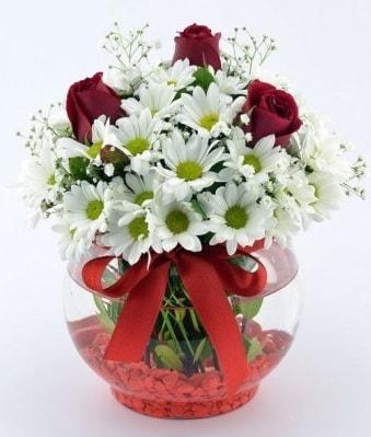 Fanusta 3 Gül ve Papatya  14 şubat sevgililer günü çiçek