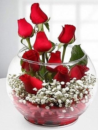 Kırmızı Mutluluk fanusta 9 kırmızı gül  Kocaeli uluslararası çiçek gönderme