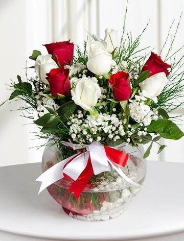Aşk Küresi  5 beyaz 5 kırmızı gül fanusta  14 şubat sevgililer günü çiçek