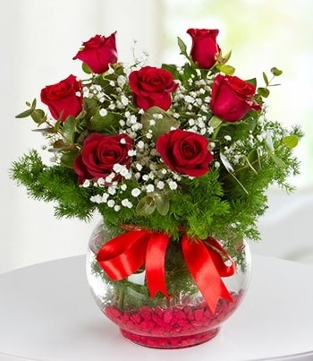 fanus Vazoda 7 Gül  Kocaeli çiçek siparişi vermek