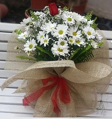 Papatya 1 adet kırmızı gül buketi  Kocaeli anneler günü çiçek yolla