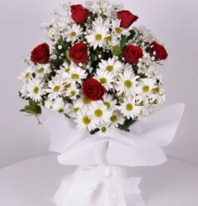 7 adet kırmızı gül ve papatyalar krizantem  14 şubat sevgililer günü çiçek